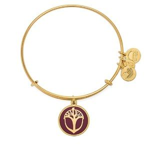 Alex and Ani Unexpected Miracles Bracelet